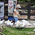 2018/05/27嘉義詩情花園露營車