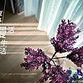 中華富貴8樓