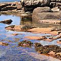 Acadia 國家公園