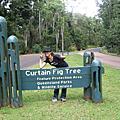Aussie -  02 Cairns