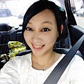 20130-08-04-新竹北埔(綠世界+老街)