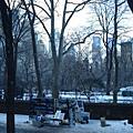 紐約冬景色