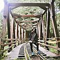 20170903阿里山遊(上)水山車站、水山巨木