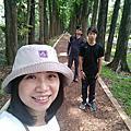 20180513高雄遊(上)六龜。新威森林桃花心木