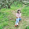 20200125嘉義遊記。瑞里科仔林觀光果園賞李花