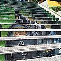20201014苗栗遊(下)三義。建中國小3D彩繪階梯