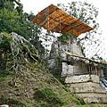 Tikal-提卡爾‧瓜地馬拉