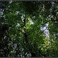 920929-板橋林家花園