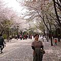 2014.04.13 韓國 - 十井洞, 仁川大公園, 昌德宮月光漫步