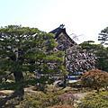 2011京都賞櫻