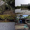 第0662篇[屏東東港]大潭濕地X影像導覽 Pingtung Datan Wetlands X Taiwan tourist attractions image navigation