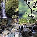 第0800篇[新竹橫山]豐鄉瀑布/糯米橋/百年伯公X影像導覽|Hsinchu Fengxiang Waterfall X Taiwan tourist attractions image navigation