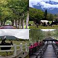 第0806篇[花蓮瑞穗]瑞穗牧場/天下第一班/神農獎/瞭望台X影像導覽|Hualien Ruisui Pasture X Taiwan tourist attractions image navigation
