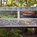 第0821篇[苗栗公館]隘寮小棧/荷塘居X影像導覽|Miaoli X Taiwan tourist attractions image navigation