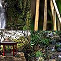 第0825篇[基隆七堵]泰安瀑布/賞花區/涼亭區/觀瀑廣場X影像導覽|Keelung Taian Waterfall X Taiwan tourist attractions image navigation