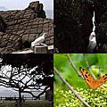 第0830篇[宜蘭頭城]北關海潮公園/古砲/一線天/豆腐岩/單面山X影像導覽|Yilan Beiguan Tidal Park X Taiwan tourist attractions image navigation
