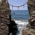 第0895篇[Japan Kyushu]Nagasaki Meoto Iwa/Wedded Rocks X Attraction image navigation|日本九州長崎野母崎黑濱海岸夫婦岩X景點影像導覽