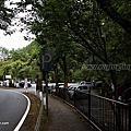 第0900篇[Japan Kyushu]Kumamoto Kikuchi Valley/Kikuchi Glen X Attraction image navigation|日本九州熊本菊池溪谷/九州自然步道X景點影像導覽