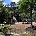 第0920篇[桃園復興]綠光森林/浪漫愛情草原/綿羊放牧區X影像導覽|Taoyuan Fuxing Green Light Forest X Taiwan tourist attractions image navigation