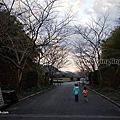 第1244篇[日本九州]鹿兒島清水磨崖仏/岩屋公園/櫻之屋形X日本景點導覽|Japan Kagoshima Minamikyushu Iwaya Park X Japan