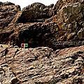 第1252篇[日本九州]宮崎大御神社/龍宮(鵜戶神社)X日本景點導覽|Japan Kyushu Miyazaki Myokokuji Omi Shrine X Japan