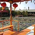 第1269篇[台南六甲]九品蓮花生態教育園區X台灣景點導覽|Tainan Liujia Jioupin Lotus Garden X Taiwan attraction