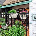 20200727_來信試吃-迷迭香花園Rosmarine Giardino