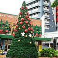 2007達爾文市區聖誕樹xmas tree in Darwin