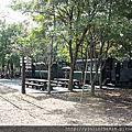 橘葛格BuKo林場散步去