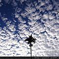 【追雲】『藍藍的天。朵朵的雲』 @花東縱谷