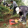 【優活假期】101.12.16文旦樹好年冬~修枝施肥