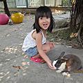 201308八里兔子餐廳