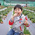 2014-02-28 新竹北埔綠世界+關西金勇果園