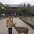 104-02-17 奈良可愛餓壞小鹿