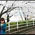 2008 戀戀櫻花 day1