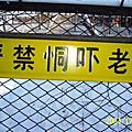 2004東北十日遊