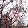 2010/02/20中正紀念堂