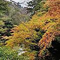 日本立山黑部:鶴仙溪步道散策+那谷寺+神的故鄉上高地+合掌村+郡上八幡賞風之旅