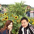 981114 2009新社花海節