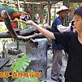 2016森林鳥花園