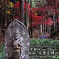 2010 楓京都-1120