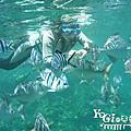 201105說走就走遊沖繩-藍洞浮潛