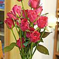 2011玫瑰網聚