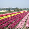 2014 復活節荷蘭行
