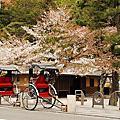 本隆寺+嵐山+天龍寺