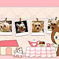 Blog用圖片