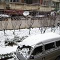 08-1-29雪景