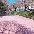 日本 青森 弘前城 十和田湖 日本黃金週東北小旅行