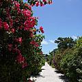 日本國境之南--石垣島