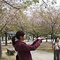 日本。南紀